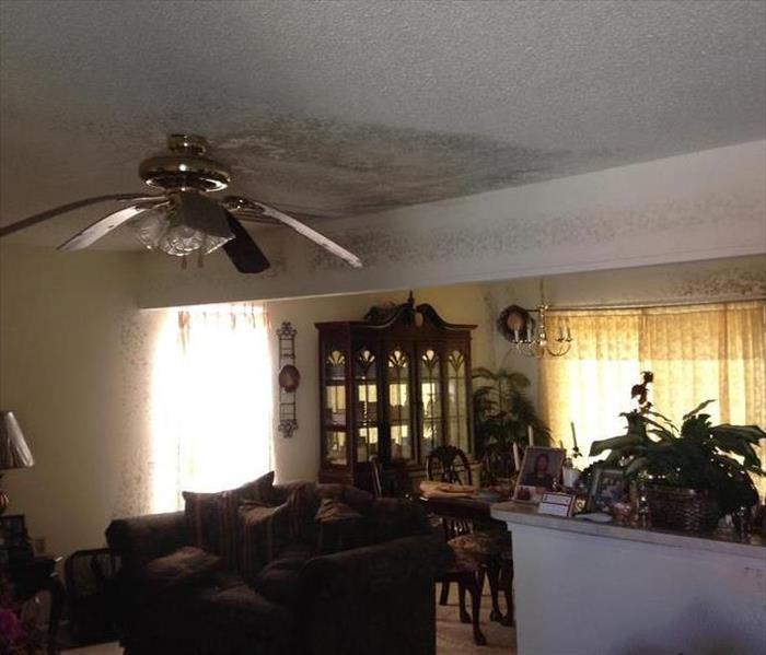 A congested living room covered in mold.