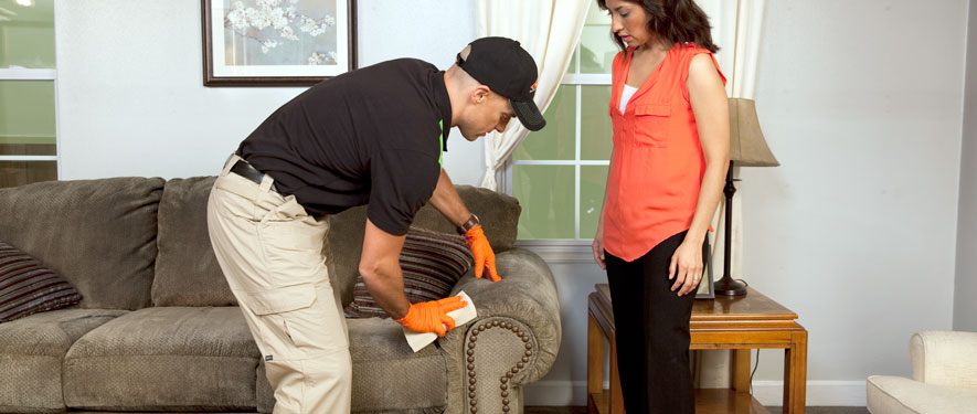 Columbia, SC carpet upholstery cleaning